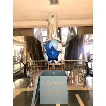Коробка сюрприз голуба з написом